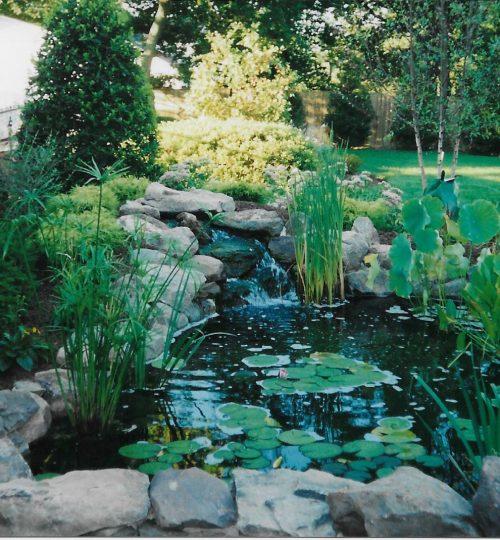 23#Baumann pond1